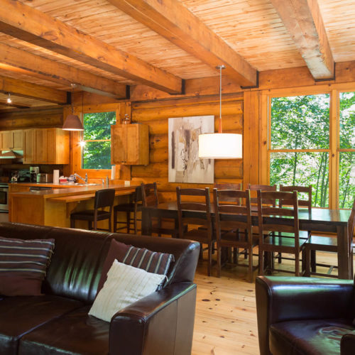 Contemporary - Chalets rentals - Côté Nord Tremblant - Living room 04